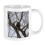 Winter Maple Island Bald Eagle Mugs