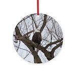 Winter Maple Island Bald Eagle Ornament (Round)