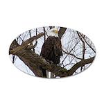 Winter Maple Island Bald Eagle Wall Decal