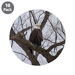 "Winter Maple Island Bald Eagle 3.5"" Button (10 pac"