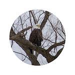 "Winter Maple Island Bald Eagle 3.5"" Button"
