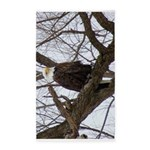 Winter Maple Island Bald Eagle Area Rug