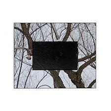 Winter Maple Island Bald Eagle Picture Frame