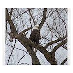 Winter Maple Island Bald Eagle King Duvet
