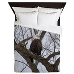 Winter Maple Island Bald Eagle Queen Duvet
