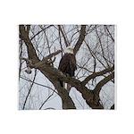 Winter Maple Island Bald Eagle Throw Blanket