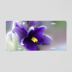 Purple Flower, Belladonna Aluminum License Plate