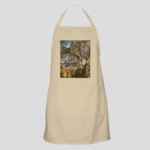 Stormy Sunset Trees Apron