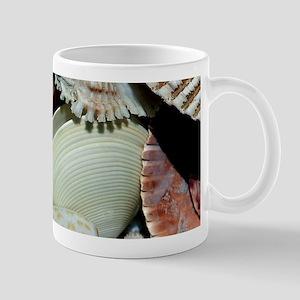Colorful Seashells Mug