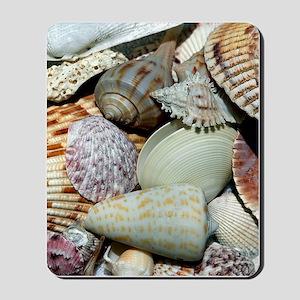 Colorful Seashells Mousepad