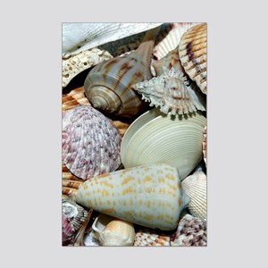 Colorful Seashells Mini Poster Print
