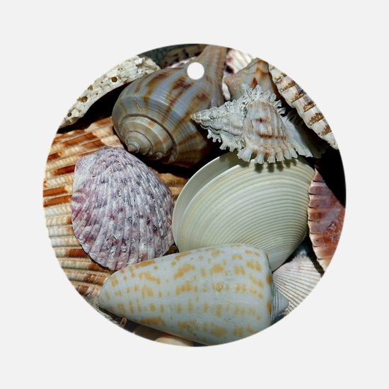 Colorful Seashells Ornament (Round)