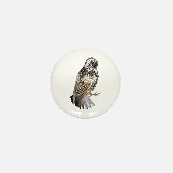 Iridescent Starling Mini Button