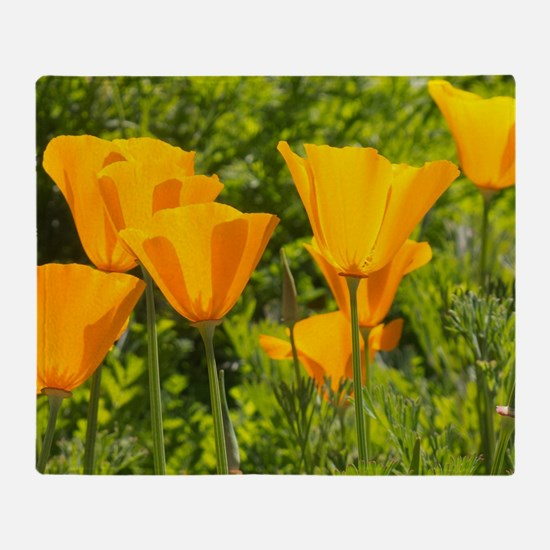 California Poppy Choir Throw Blanket