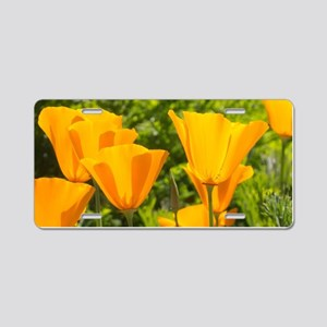California Poppy Choir Aluminum License Plate