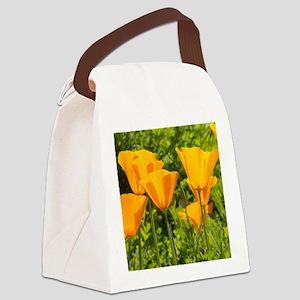 California Poppy Choir Canvas Lunch Bag