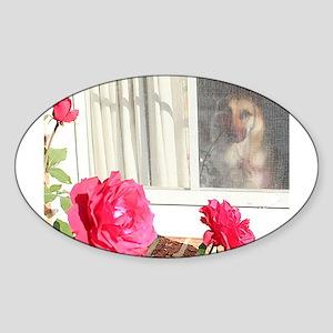 Exhibit Tara's Rosey Reflections Sticker