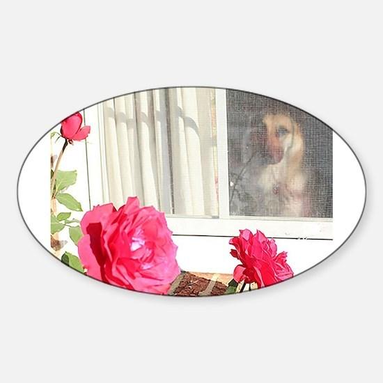 Exhibit Tara's Rosey Reflections Decal