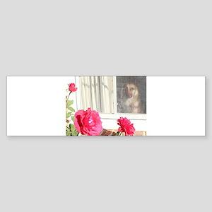 Exhibit Tara's Rosey Reflections Bumper Sticker