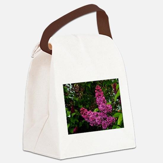 Lilac Bush Canvas Lunch Bag