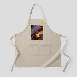 Rainbow Seashell Colors Apron