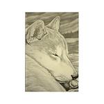 Shiba Inu Dog Rectangle Magnet (100 pack)