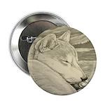 """Shiba Inu Dog 2.25"""" Button (10 pack)"""