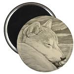 "Shiba Inu Dog 2.25"" Magnet (10 pack)"