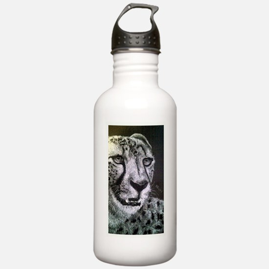the stare Sports Water Bottle