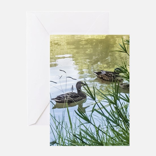 Ducks On a Reflection Pond Greeting Cards