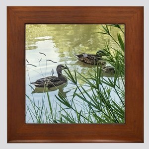 Ducks On a Reflection Pond Framed Tile