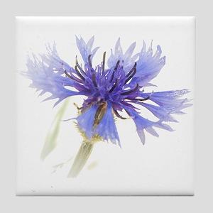 Blue Cornflower Tile Coaster
