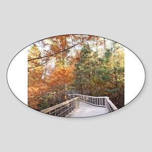 Wonderous Path through Autumn Sticker