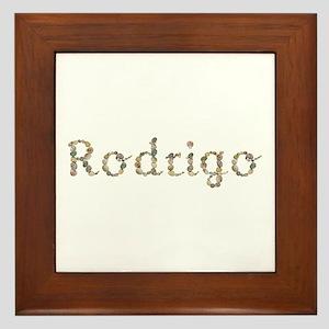 Rodrigo Seashells Framed Tile