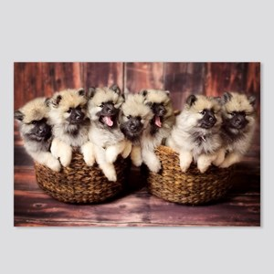 Puppies in baskets Postcards (Package of 8)