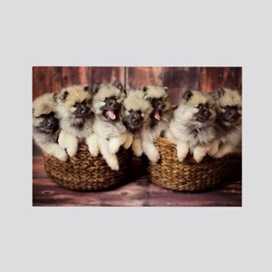 Puppies in baskets Magnets