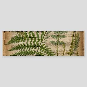 botanical fern leaves Bumper Sticker