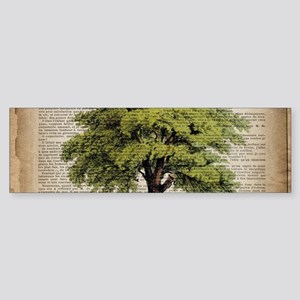vintage oak tree Bumper Sticker