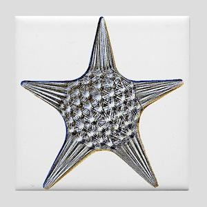 Sea Star Tile Coaster