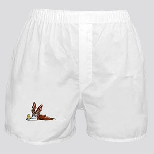 Colored Boston Boxer Shorts