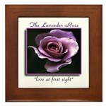 Lavender Rose Meaning Framed Tile