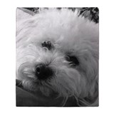 Bichon Fleece Blankets