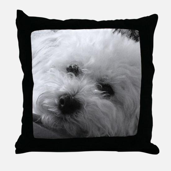 Unique Animals Throw Pillow