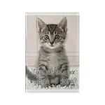 Cat Coat Rectangle Magnet (100 pack)