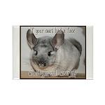 Chinchilla Coat Rectangle Magnet (100 pack)
