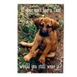 Dog Coat Postcards (Package of 8)