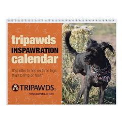 Tripawds Wall Calendar #23 - New For 2018