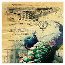Paris vintage peacock  Poster