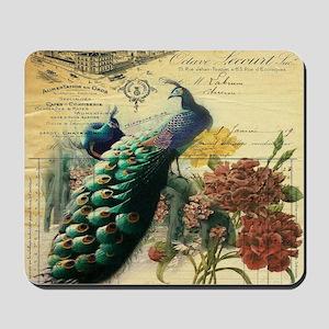 Paris vintage peacock  Mousepad
