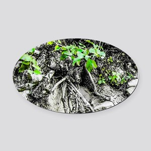 Rocks, Roots and Leaves Oval Car Magnet